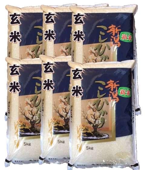 画像1: 【玄米】令和2年産・新潟県産コシヒカリ30kg(5kg×6袋)[石抜き処理済] (1)