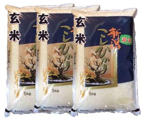 画像1: 【玄米】令和2年産・新潟県産コシヒカリ15kg(5kg×3袋)[石抜き処理済] (1)