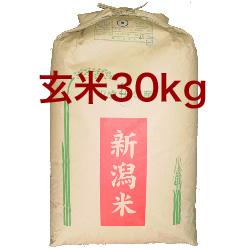 画像1: 【玄米】令和2年産・新潟県産コシヒカリ30kg (1)